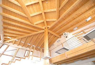 Foto articolo tetto in legno