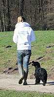 Addestramento cani Bergamo e Provincia