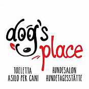 Dogs Place  Asilo a 4 zampe