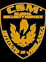 Antifurti Roma CSM Security
