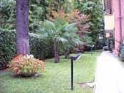 Giorgio Patrizi Manutenzione Giardini
