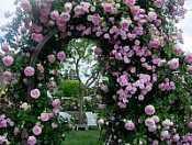 I Giardini di Celeste