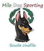 Milo Dog Sporting asd