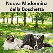 Nuova Madonnina della Boschetta