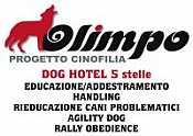 OLIMPO PROGETTO CINOFILIA  DOG HOTEL 5
