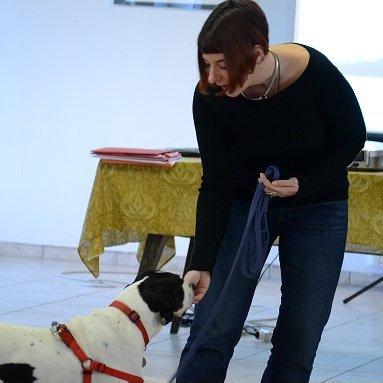 DogSoul Foto 3
