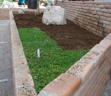 Green heaven srl Foto 18