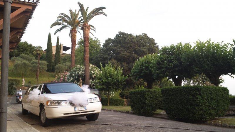 limousine service lucca Foto 6