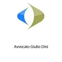 Avvocato Giulio Dini