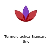 Termoidraulica Biancardi Snc
