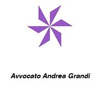 Avvocato Andrea Grandi