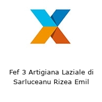 Fef 3 Artigiana Laziale di Sarluceanu Rizea Emil