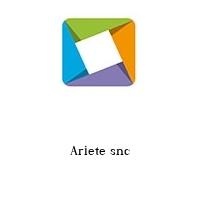 Ariete snc
