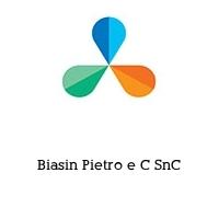 Biasin Pietro e C SnC