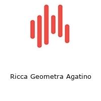 Ricca Geometra Agatino