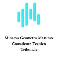 Minerva Geometra Massimo Consulente Tecnico Tribunale