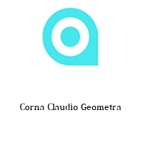 Corna Claudio Geometra