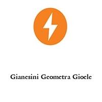 Gianesini Geometra Gioele