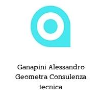 Ganapini Alessandro Geometra Consulenza tecnica