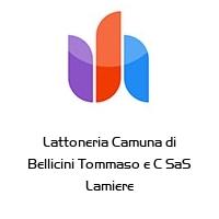 Lattoneria Camuna di Bellicini Tommaso e C SaS Lamiere