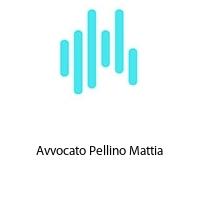 Avvocato Pellino Mattia