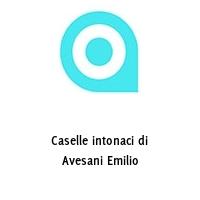 Caselle intonaci di Avesani Emilio