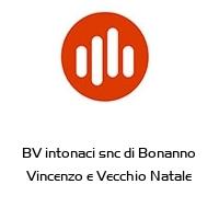 BV intonaci snc di Bonanno Vincenzo e Vecchio Natale