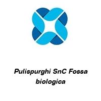 Pulispurghi SnC Fossa biologica