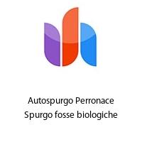 Autospurgo Perronace Spurgo fosse biologiche