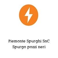 Piemonte Spurghi SnC Spurgo pozzi neri