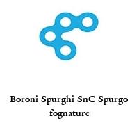 Boroni Spurghi SnC Spurgo fognature