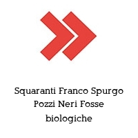 Squaranti Franco Spurgo Pozzi Neri Fosse biologiche