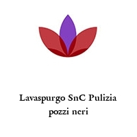 Lavaspurgo SnC Pulizia pozzi neri