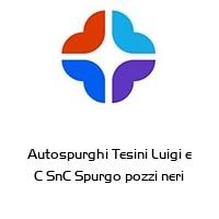 Autospurghi Tesini Luigi e C SnC Spurgo pozzi neri