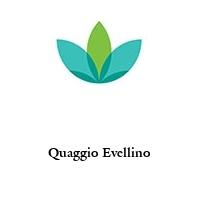Quaggio Evellino
