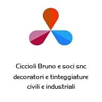 Ciccioli Bruno e soci snc decoratori e tinteggiature civili e industriali