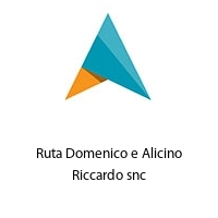 Ruta Domenico e Alicino Riccardo snc