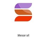 Mesor srl
