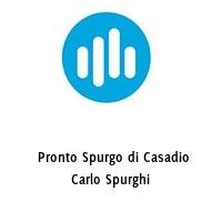Pronto Spurgo di Casadio Carlo Spurghi