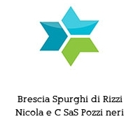 Brescia Spurghi di Rizzi Nicola e C SaS Pozzi neri
