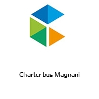 Charter bus Magnani