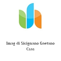 Imag di Sicignano Gaetano Csas
