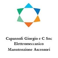 Capannoli Giorgio e C Snc Elettromeccanico Manutenzione Ascensori