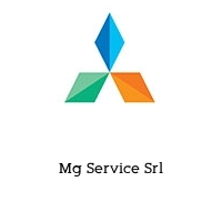 Mg Service Srl