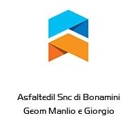 Asfaltedil Snc di Bonamini Geom Manlio e Giorgio