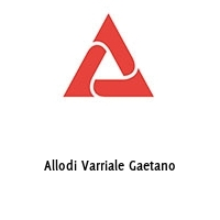 Allodi Varriale Gaetano