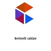 Bertinelli caldaie
