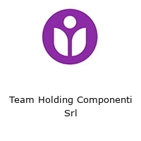 Team Holding Componenti Srl