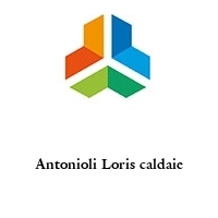 Antonioli Loris caldaie