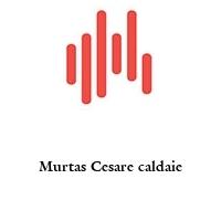 Murtas Cesare caldaie